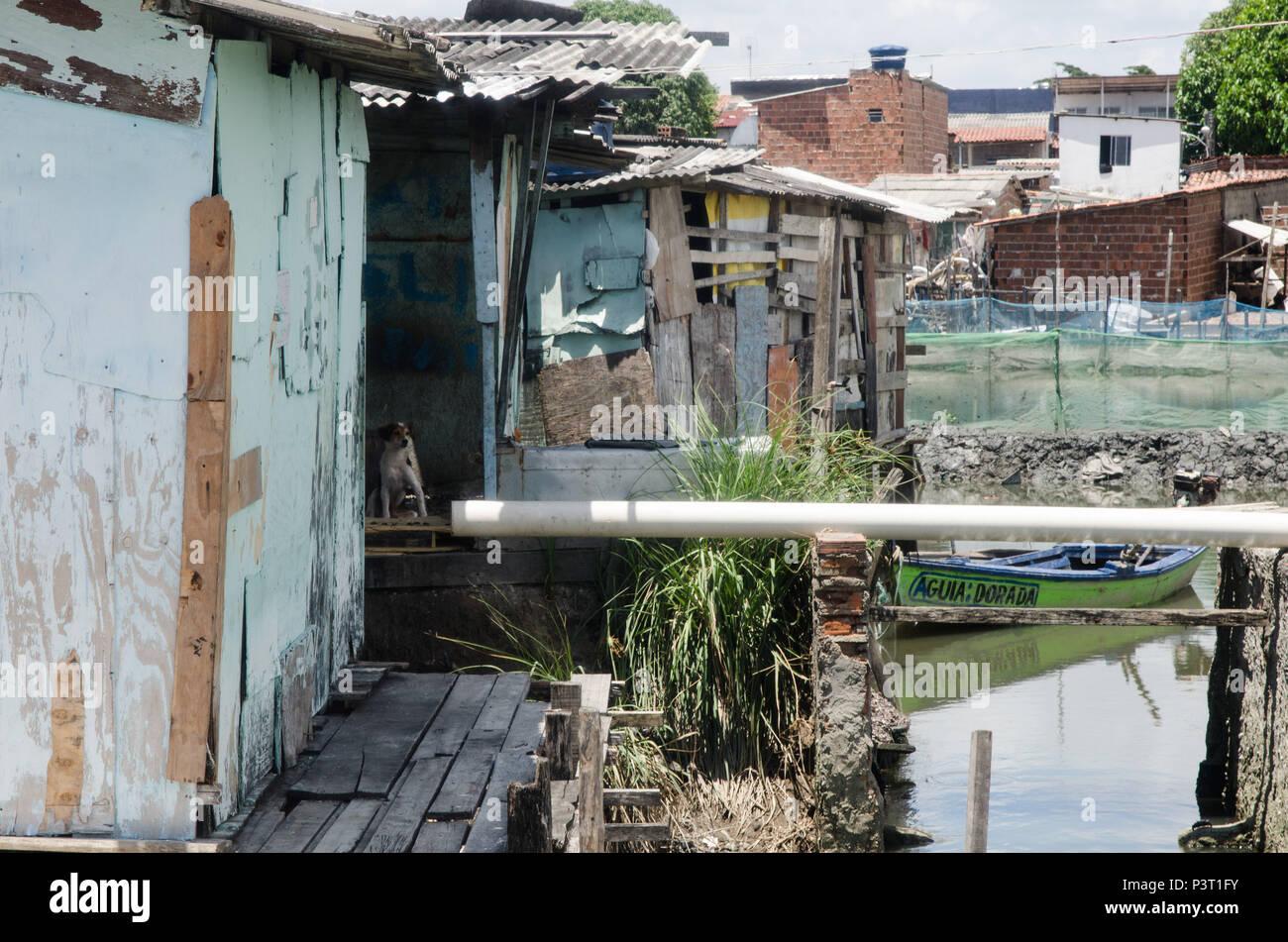 RECIFE, PE - 21.10.2015: FAVELA DO NO BUEIRO RECIFE - Aglomerado de casas de madeira ou em comunidade ribeirinha palafitas do Río Capibaribe, no Recife (PE). (Foto: Diego Herculano / Fotoarena) Foto de stock