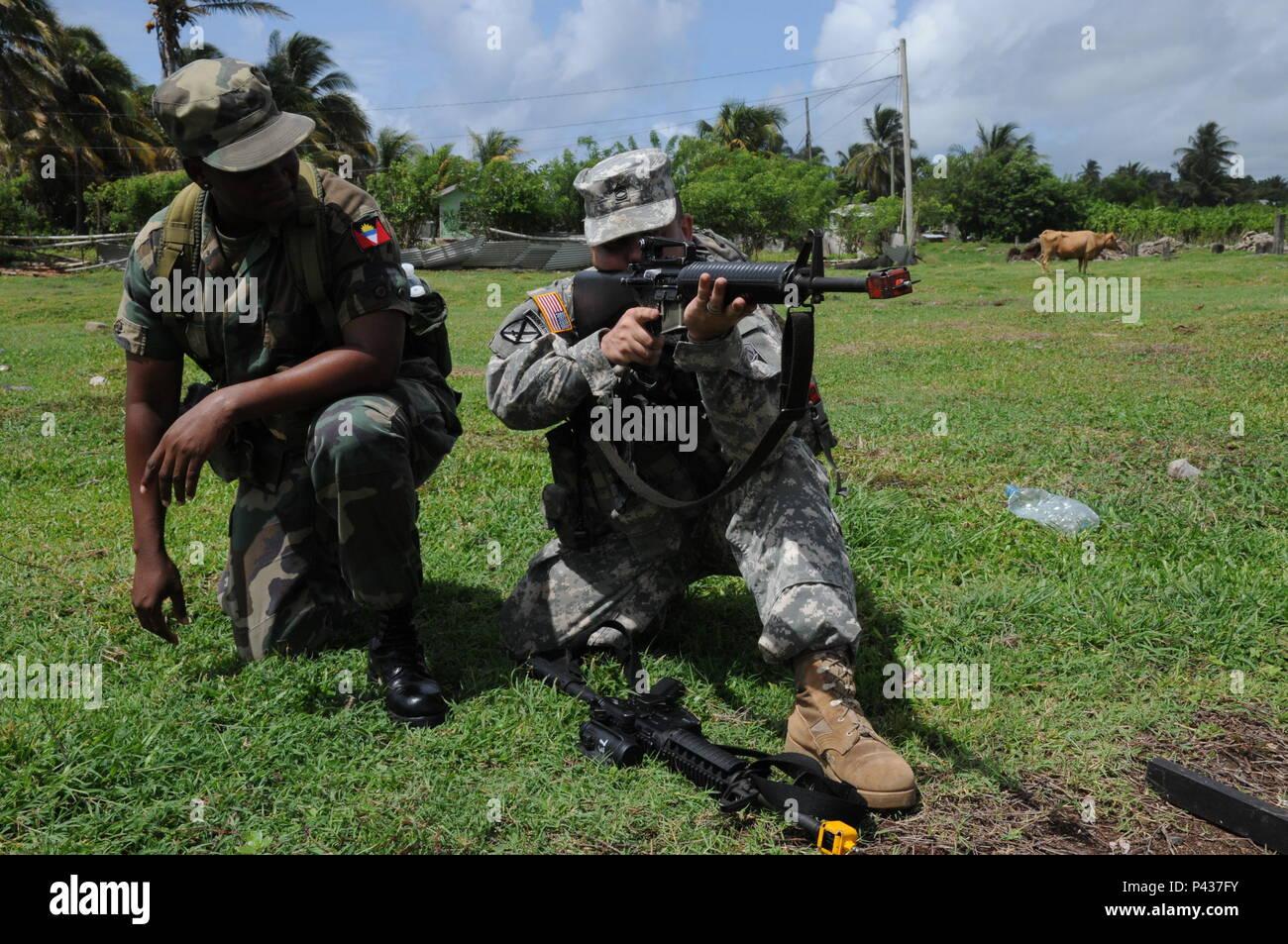 Hermosa Reanudar Muestra Para Experiencia Militar Embellecimiento ...