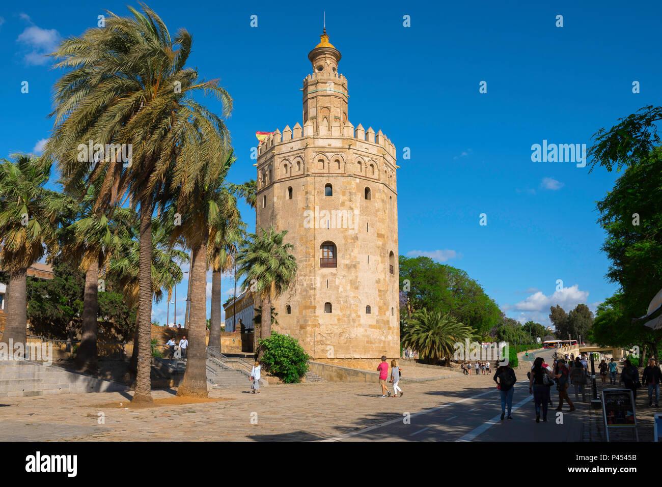 Torre del Oro Sevilla, vista de los Moriscos Torre del Oro) en la ciudad vieja de Sevilla, Andalucía, España. Imagen De Stock