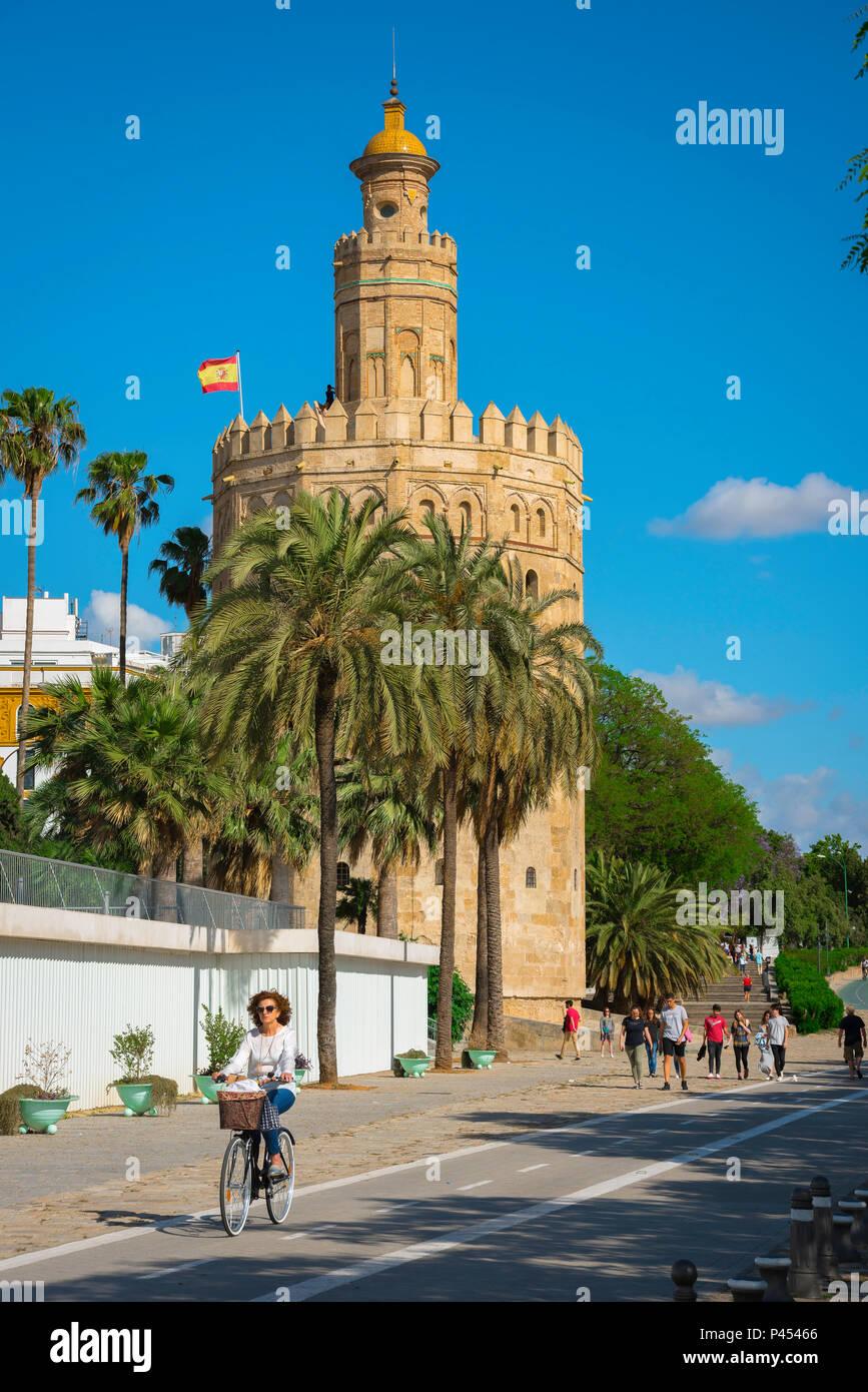 Sevilla Torre del Oro, a la vista de los Moriscos Torre del Oro) en la ciudad vieja de Sevilla, Andalucía, España. Imagen De Stock