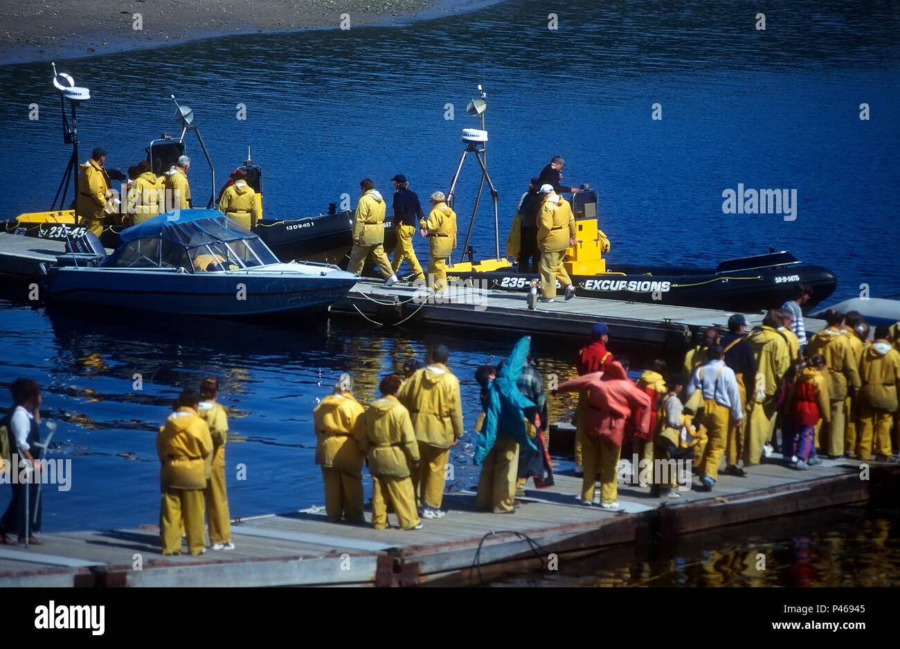 Colas de gente para obtener en sus zodiac para un viaje de avistamiento de ballenas en Tadoussac, Quebec Imagen De Stock