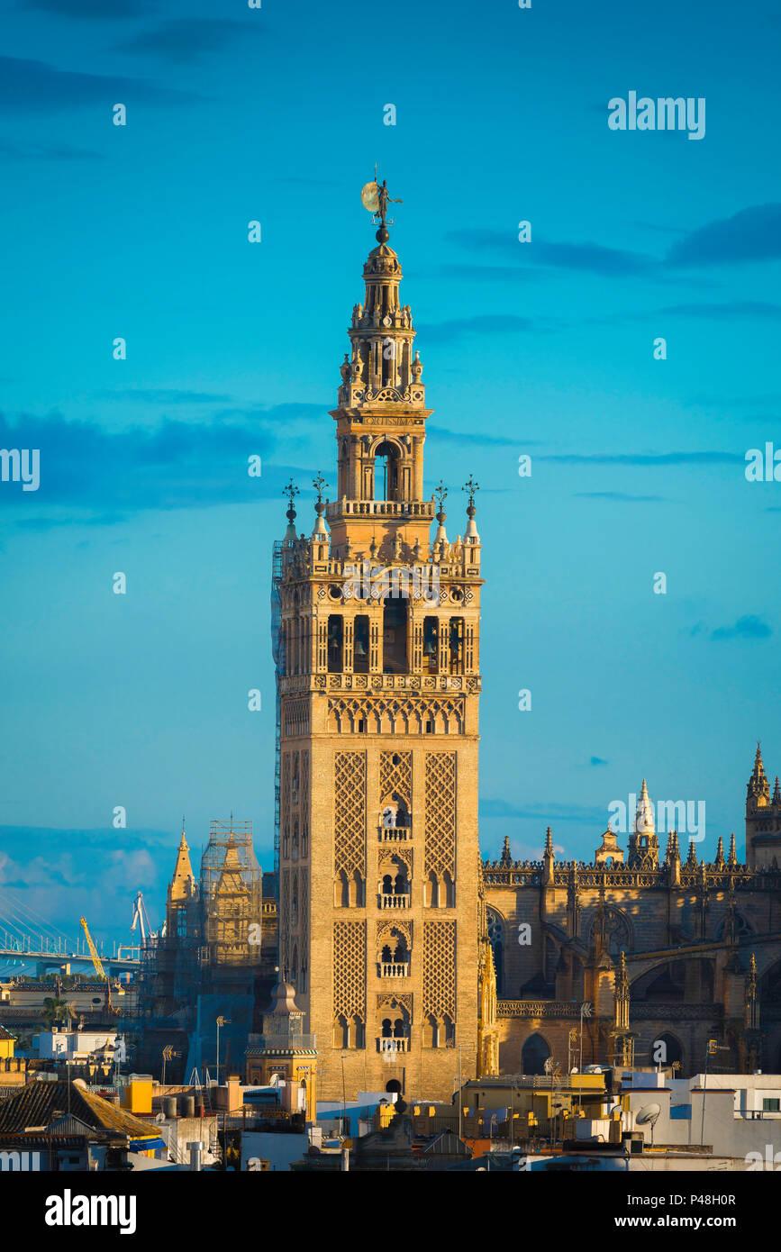 La Giralda de Sevilla, vista de la torre morisca del siglo XII conocida como La Giralda en el centro de la Ciudad Vieja de Sevilla, Andalucía, España. Imagen De Stock