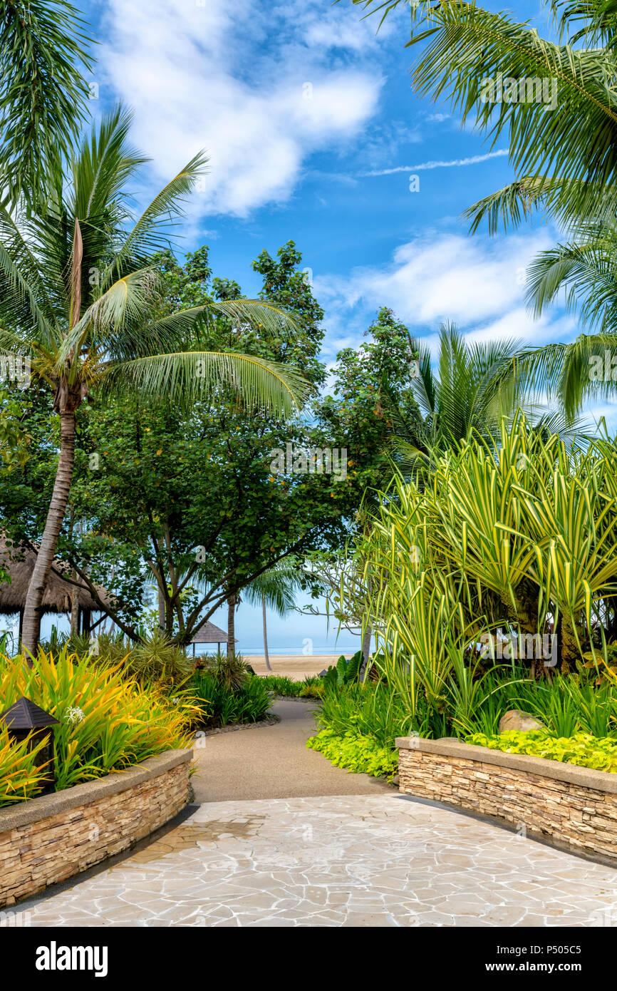 Exuberante vegetación tropical en los terrenos de Shangri-La Rasa Ria, Borneo, Malasia Imagen De Stock