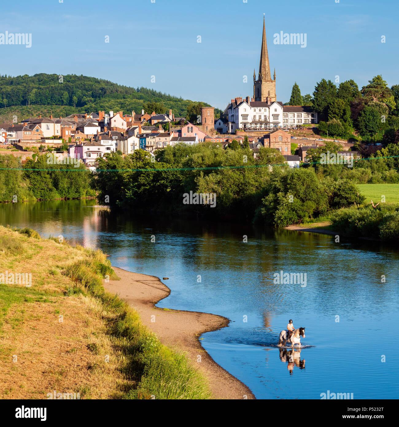 Ross On Wye, Herefordshire, Reino Unido. Fotografiado en una tarde de verano. Caballos y jinetes refrescarse en el río. Foto de stock