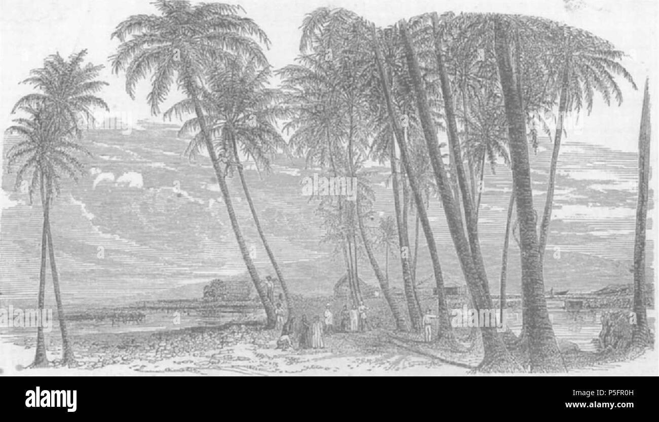 Hermosa Estado De Partida De Nacimiento De Hawai Composición - Cómo ...