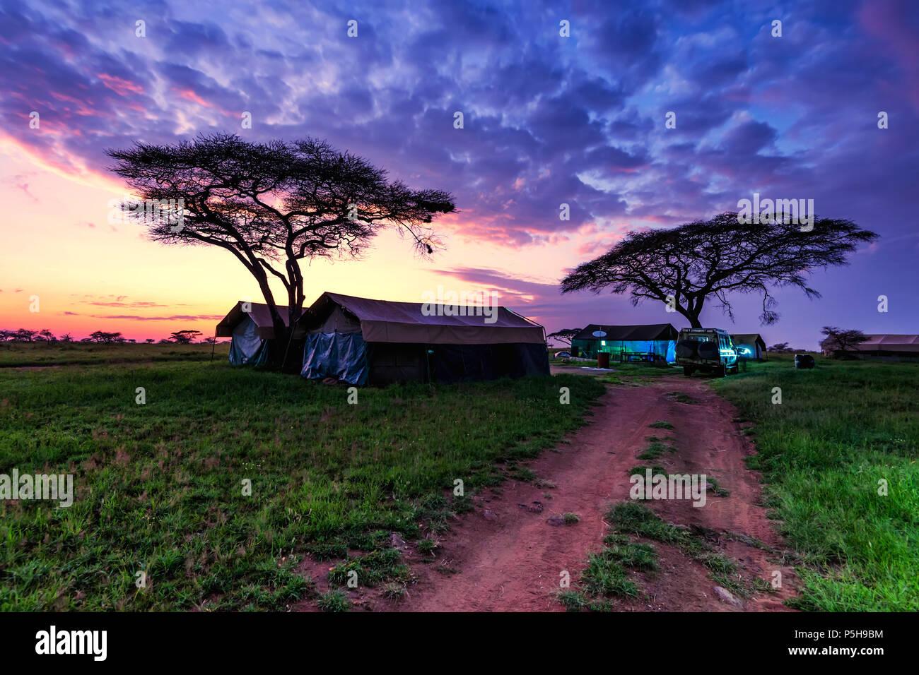 Expedición de la noche a la mañana en tiendas de campaña en el campamento de la sabana Imagen De Stock