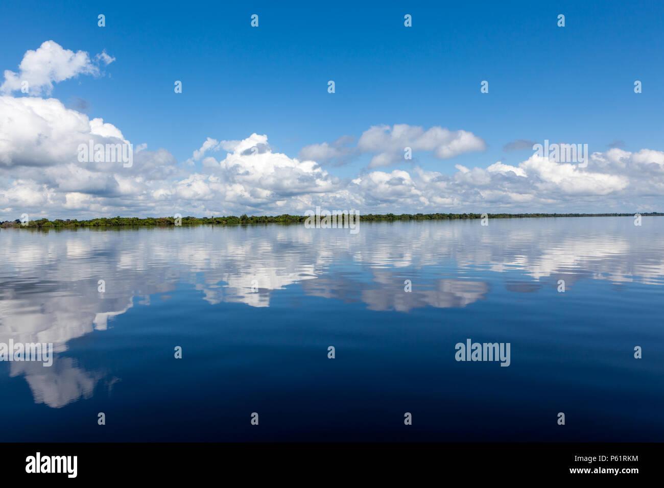 Amazonas, Brasil - El banco del río en la selva amazónica con las oscuras aguas del río Negro que refleja el cielo azul y las nubes y el bosque en el fondo de Imagen De Stock