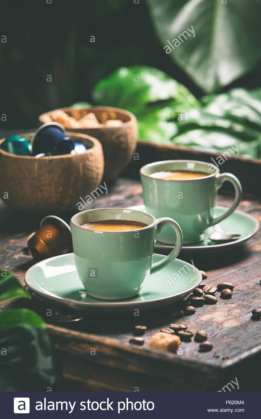 Café y fondo de hojas tropicales Imagen De Stock