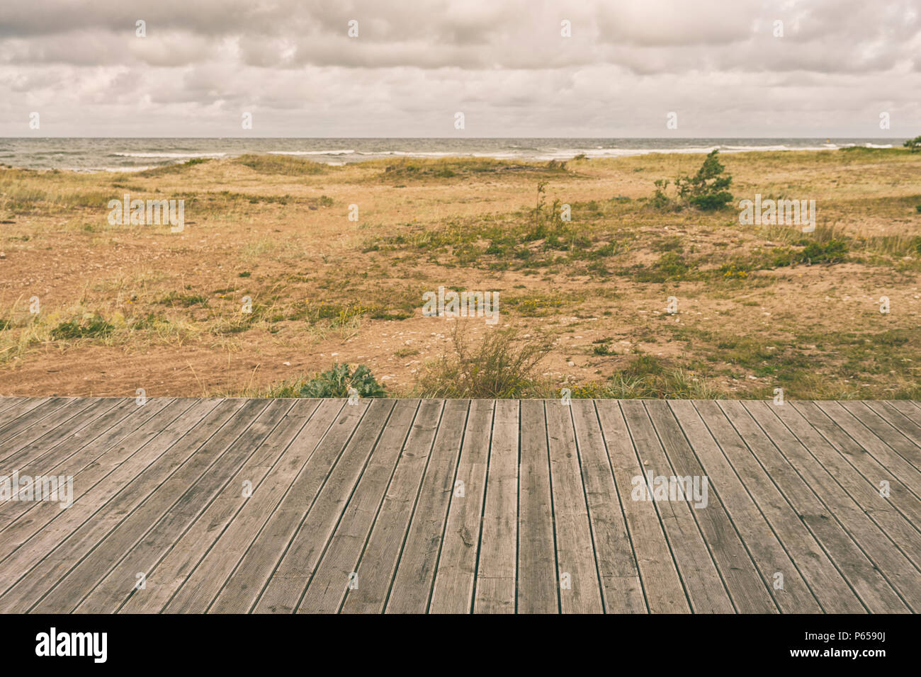 Musgo Amarillo En La Terraza De Madera Barandillas En La