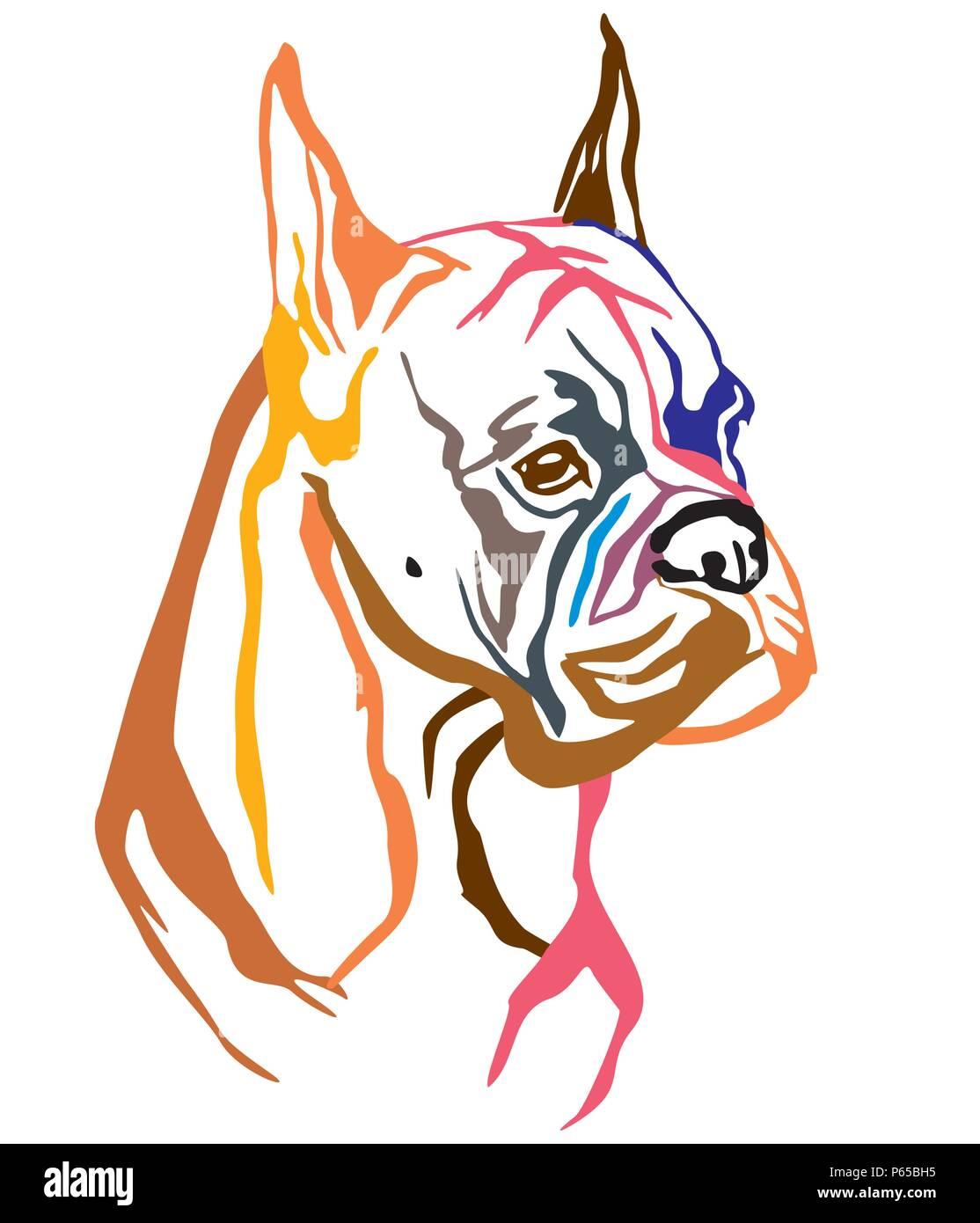 Decorativo Colorido Retrato De Perro Boxer Ilustración Vectorial En