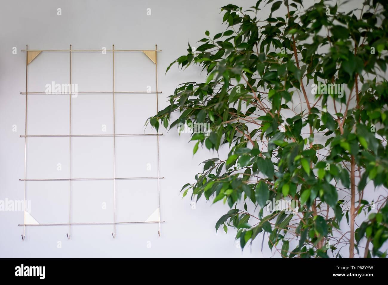 Diseño minimalista ,marco dorado con ganchos en la parte delantera ...
