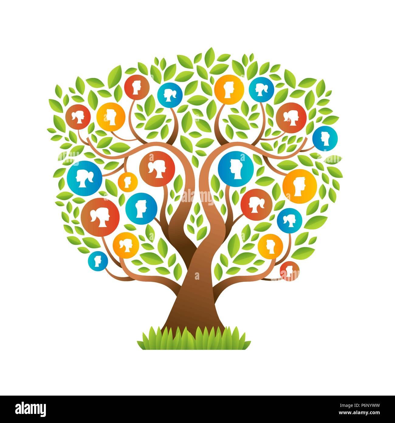 Family Tree Genealogy Vector Imágenes De Stock & Family Tree ...