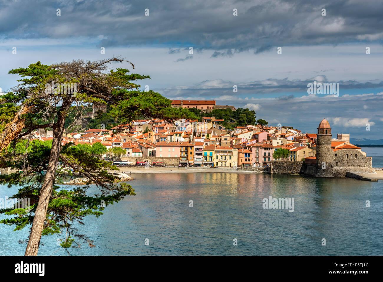 Collioure, Pirineos Orientales, Francia Imagen De Stock