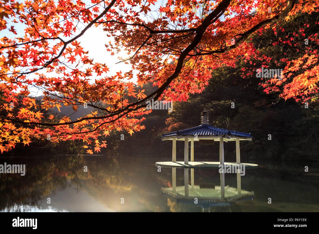 Corea del Sur, hacen de Jeola Naejangsan, Parque Nacional, estanque y Naejangsan Wuhwajeong Pavillion Imagen De Stock