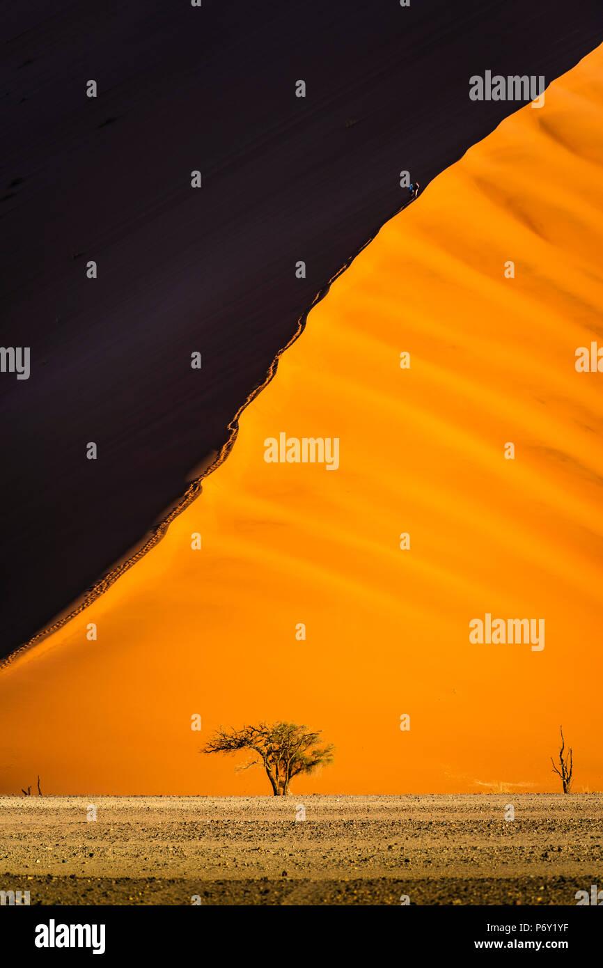 Sossusvlei, Parque Nacional Namib-Naukluft, Namibia, Africa. Dunas gigantes. Imagen De Stock