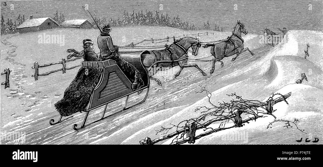 Deportes de invierno en Halifax, Nova Scotia, conducción en tándem, trineo, mejor reproducción digital de una impresión original desde el año 1881 Imagen De Stock