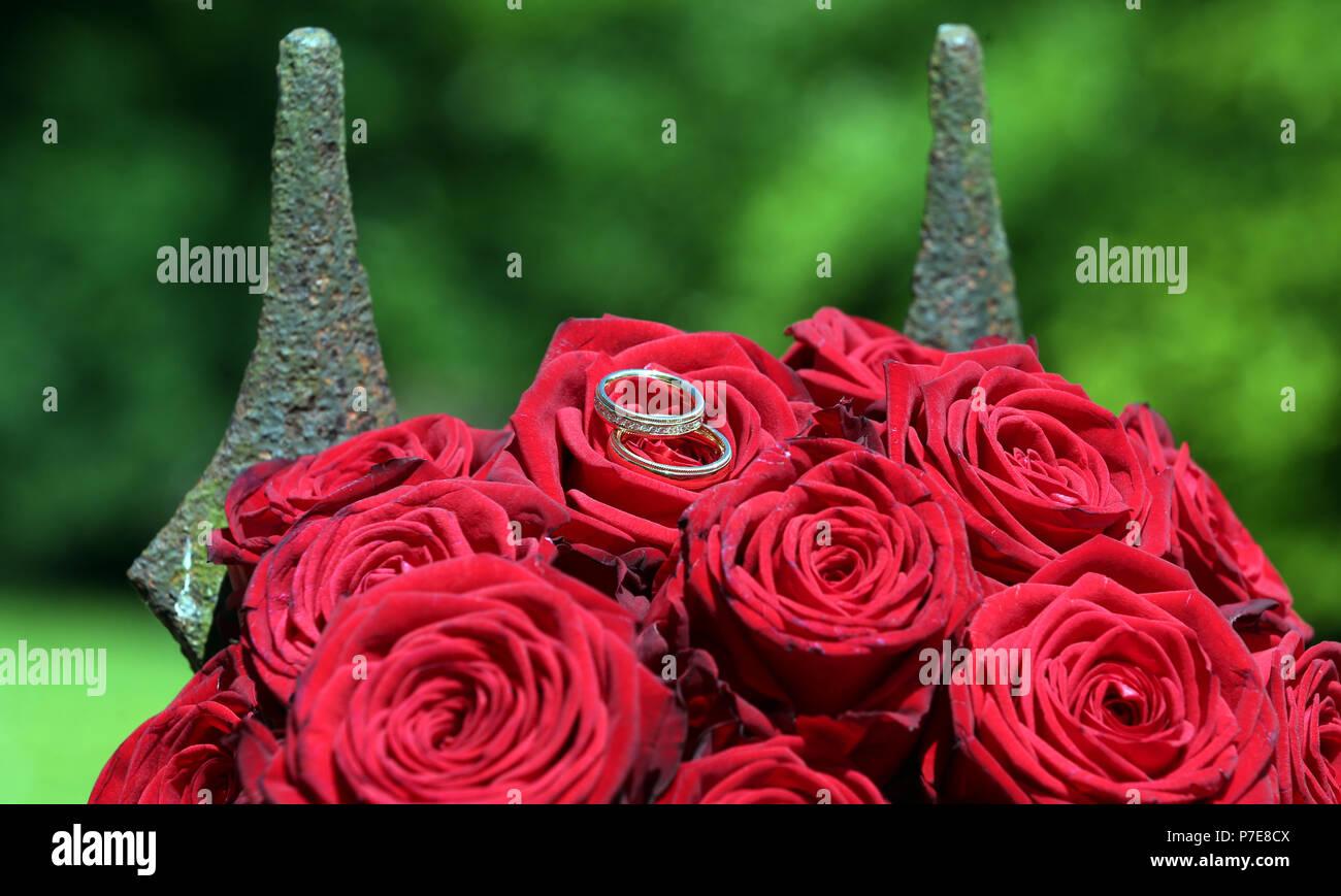 440607078a9 Anillos de Boda de Oro sobre las rosas rojas en la parte delantera de las  lancetas