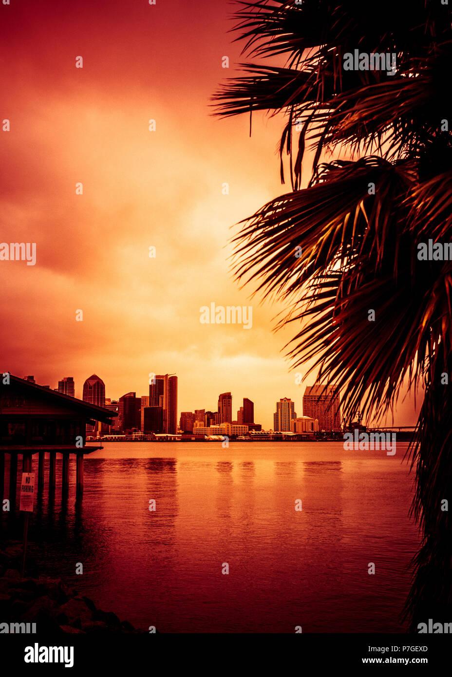 Hermosa puesta de sol sobre el horizonte de la bahía de San Diego y palmeras. Foto de stock