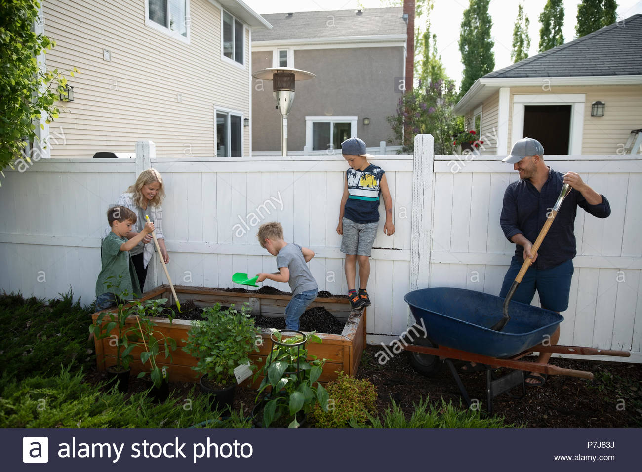 Jardinería familiar en el patio de atrás Imagen De Stock