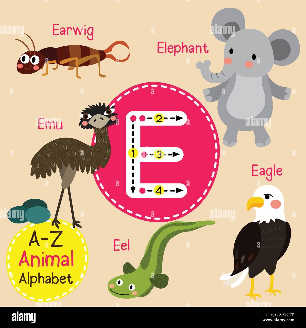 Cute zoo para niños alfabeto E carta de rastreo de animales ...