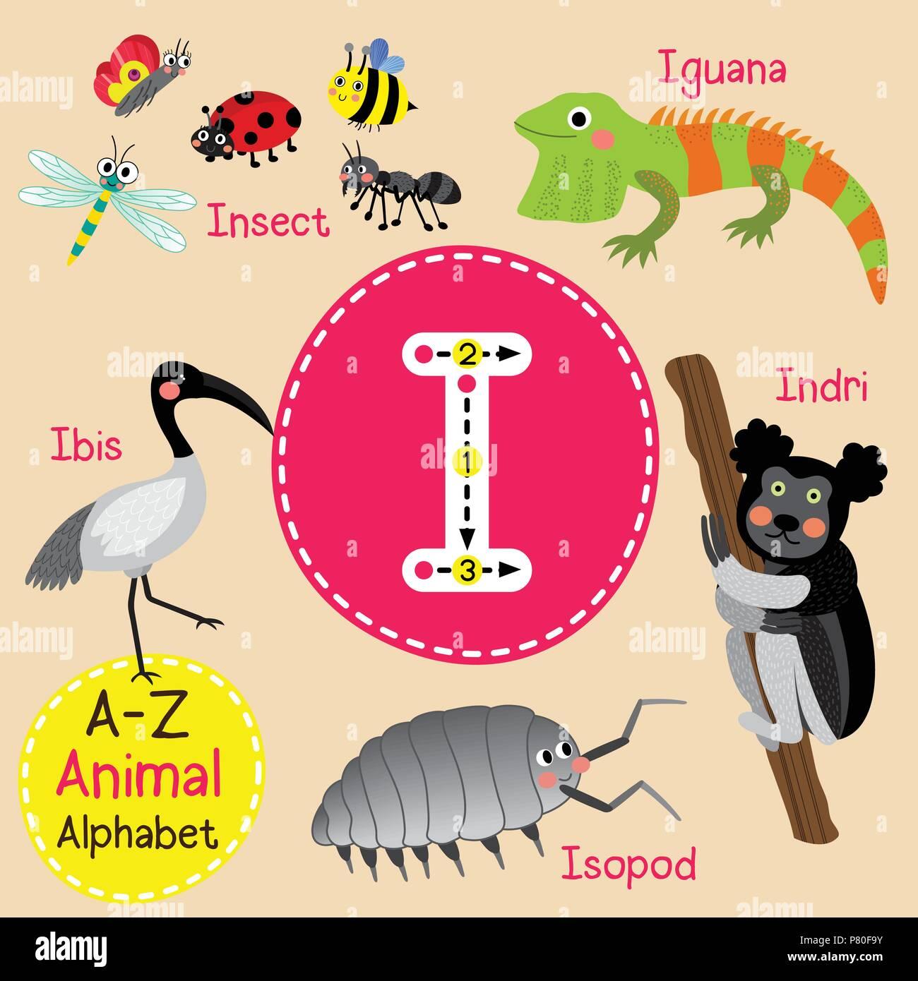 Cute zoo para niños alfabeto I Carta de rastreo de animales ...