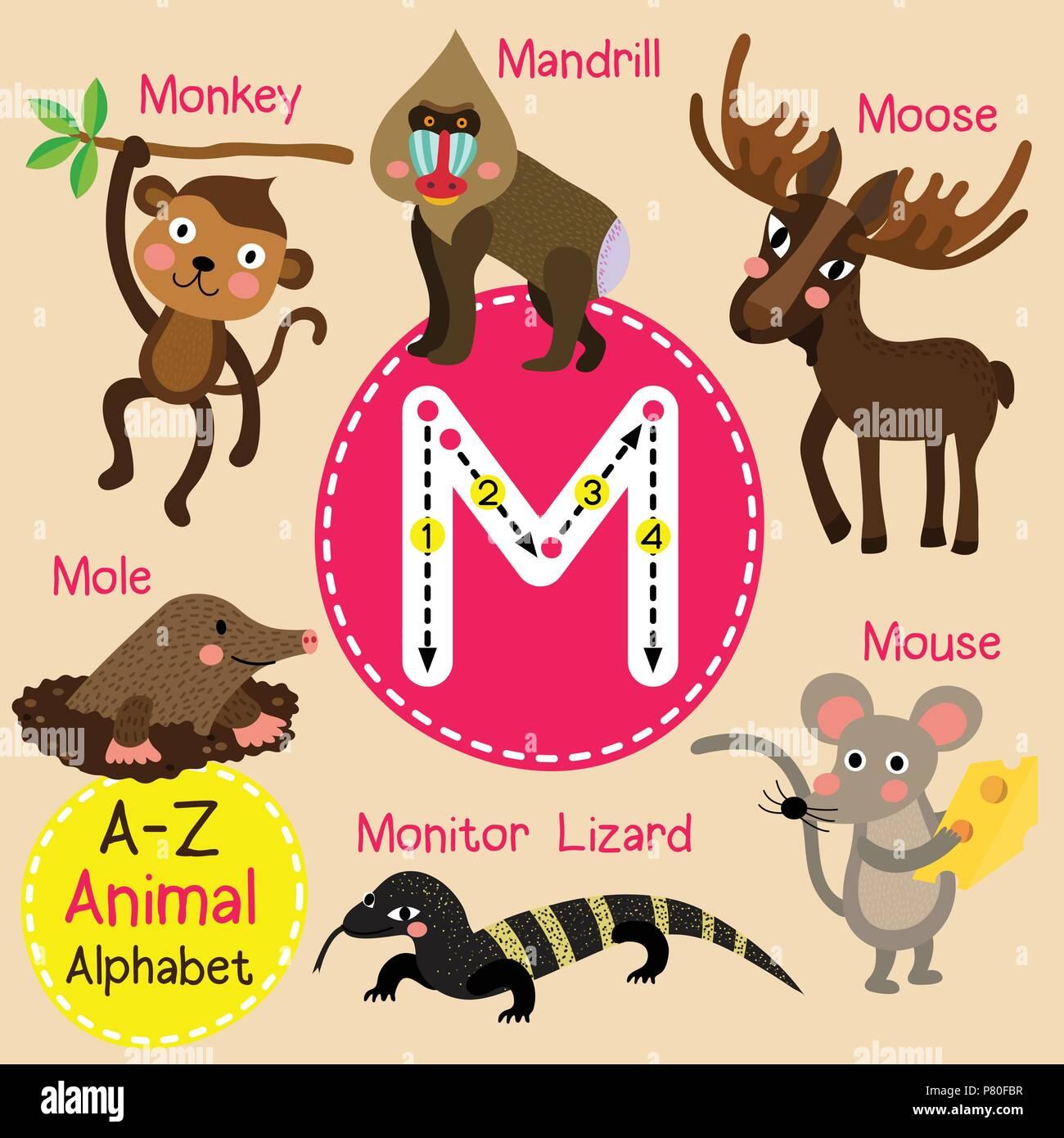 Cute zoo para niños alfabeto M carta de rastreo de animales ...