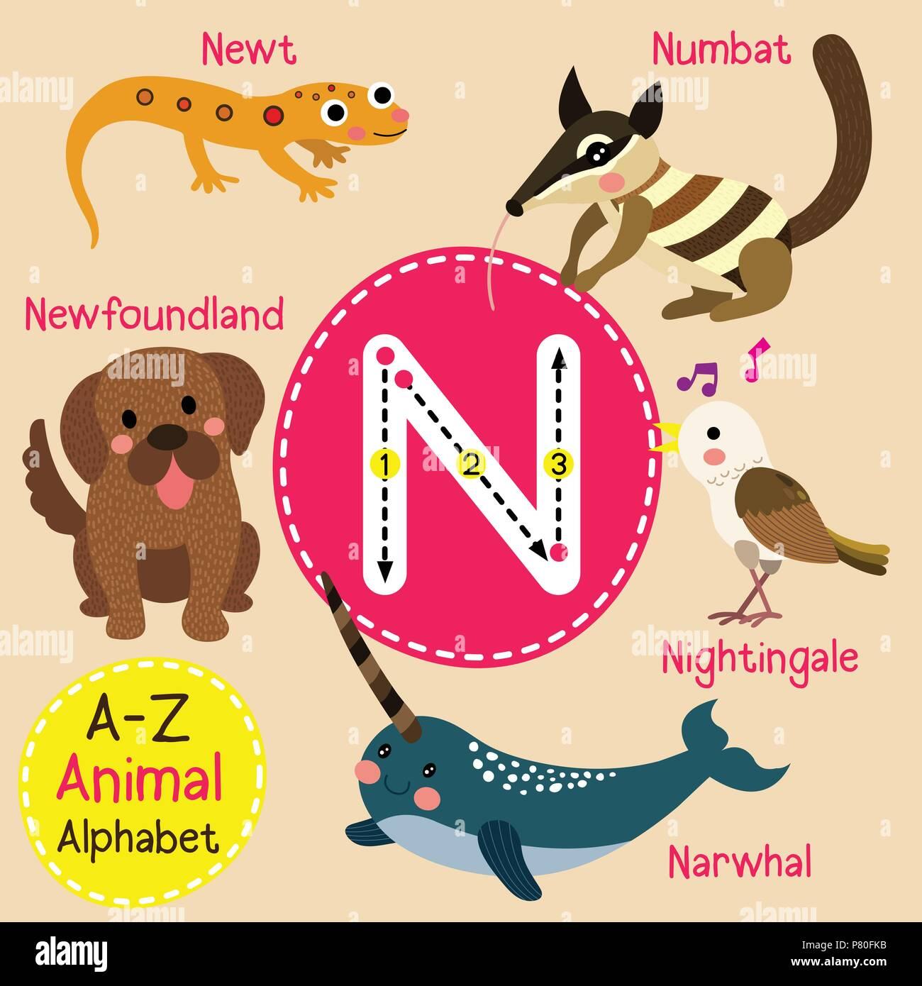 Cute zoo para niños alfabeto n carta de rastreo de animales ...