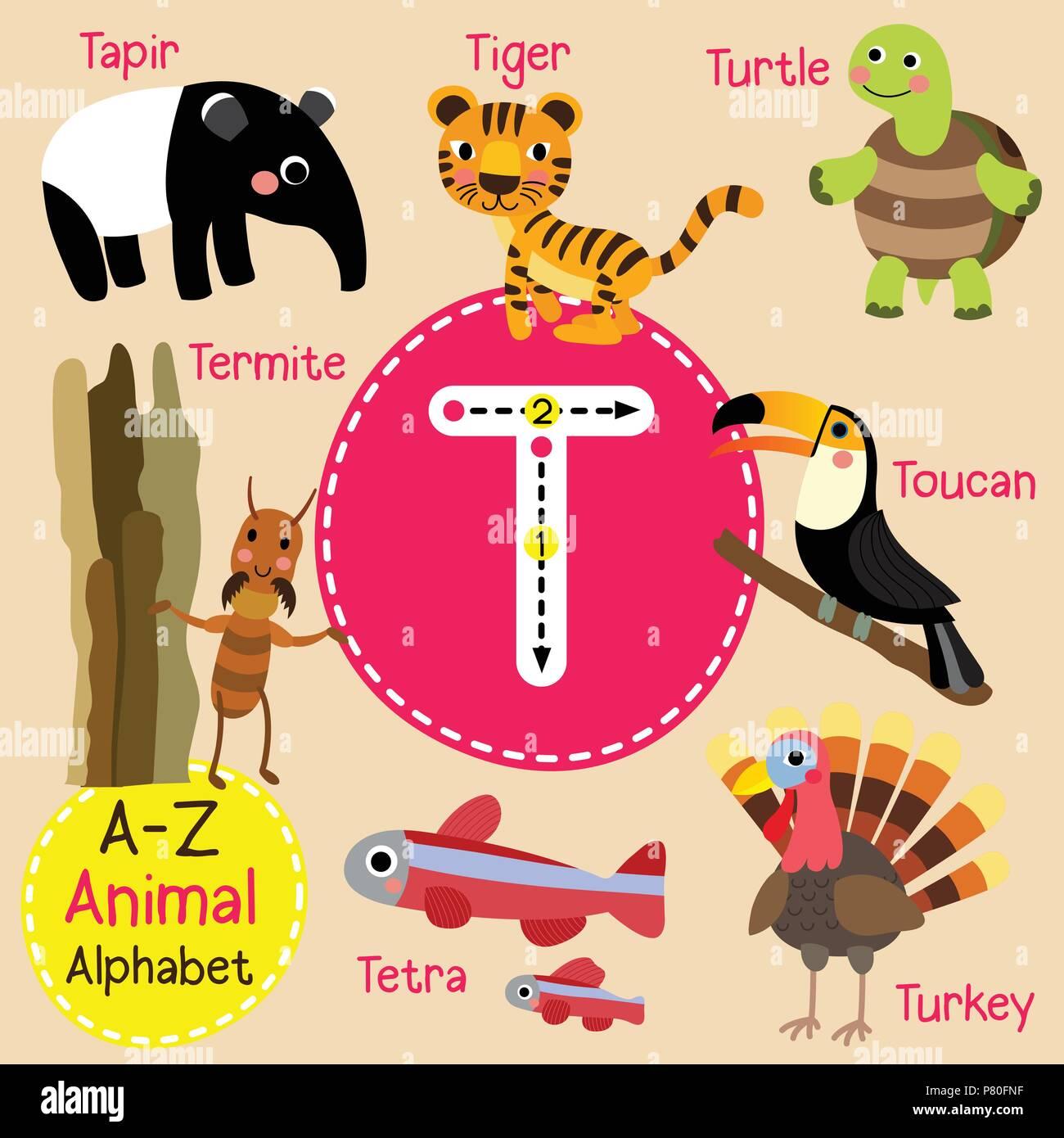 Cute Zoo Para Niños Alfabeto Letra T El Rastreo De Animales