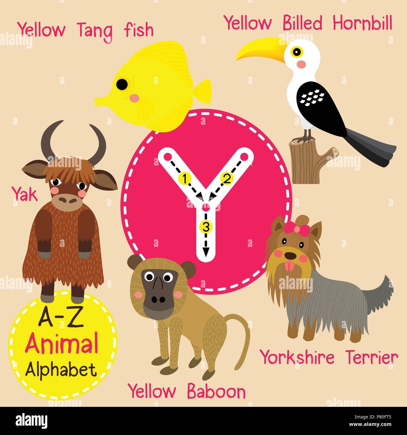 Cute zoo para niños alfabeto y carta de rastreo de animales ...
