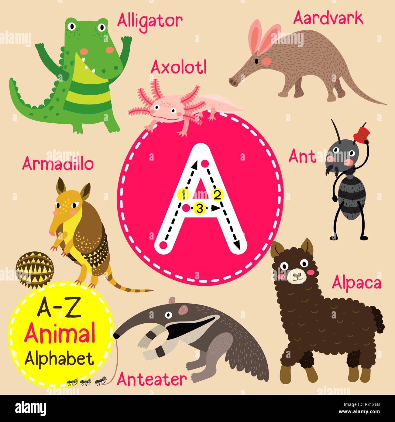 Cute zoo para niños alfabeto una carta de rastreo de animales ...