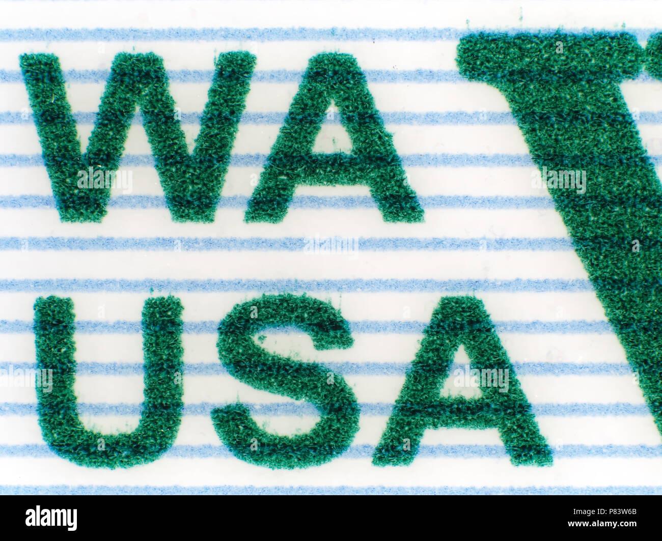 Extreme macro shot micrografía (estado de Washington) Detalle de licencia del conductor. Imagen De Stock