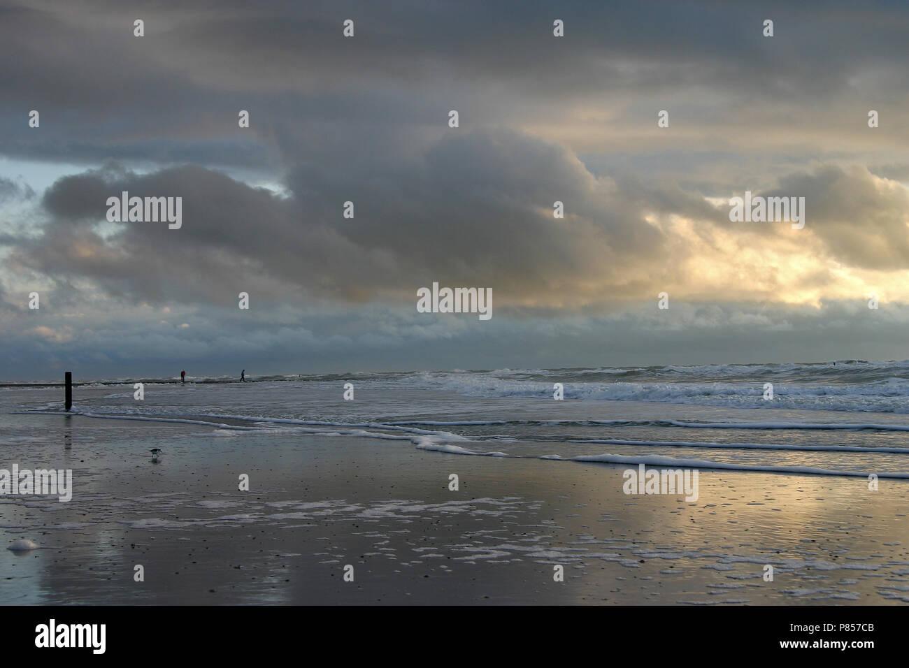 Het strand bij Camperduin; la playa de Camperduin Foto de stock