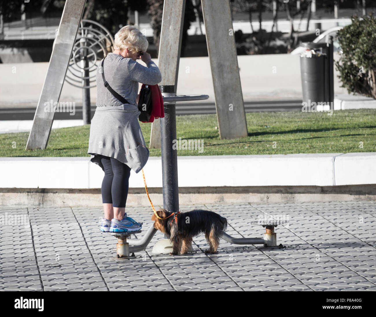 Anciana paseando a un perro utilizando máquinas de ejercicio al aire libre en las calles de la ciudad en España Imagen De Stock