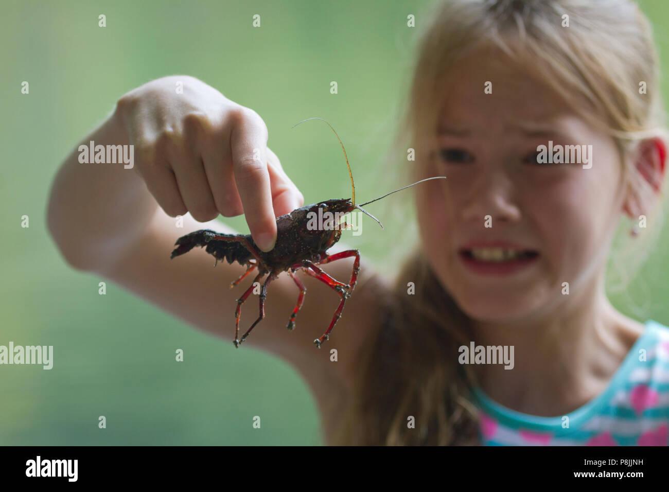 Chica con cangrejos de pantano rojo Foto de stock