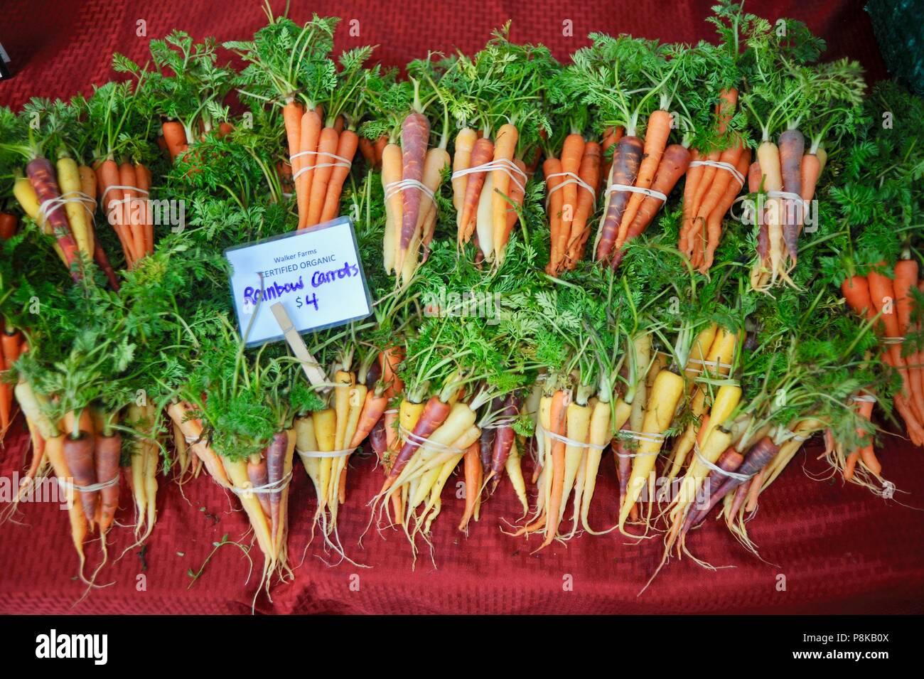 Tidy paquetes de zanahorias (arco iris) en el multicolor Walker farmstand granjas para la venta en el mercado de los granjeros en Savannah, Georgia, EE.UU. Foto de stock