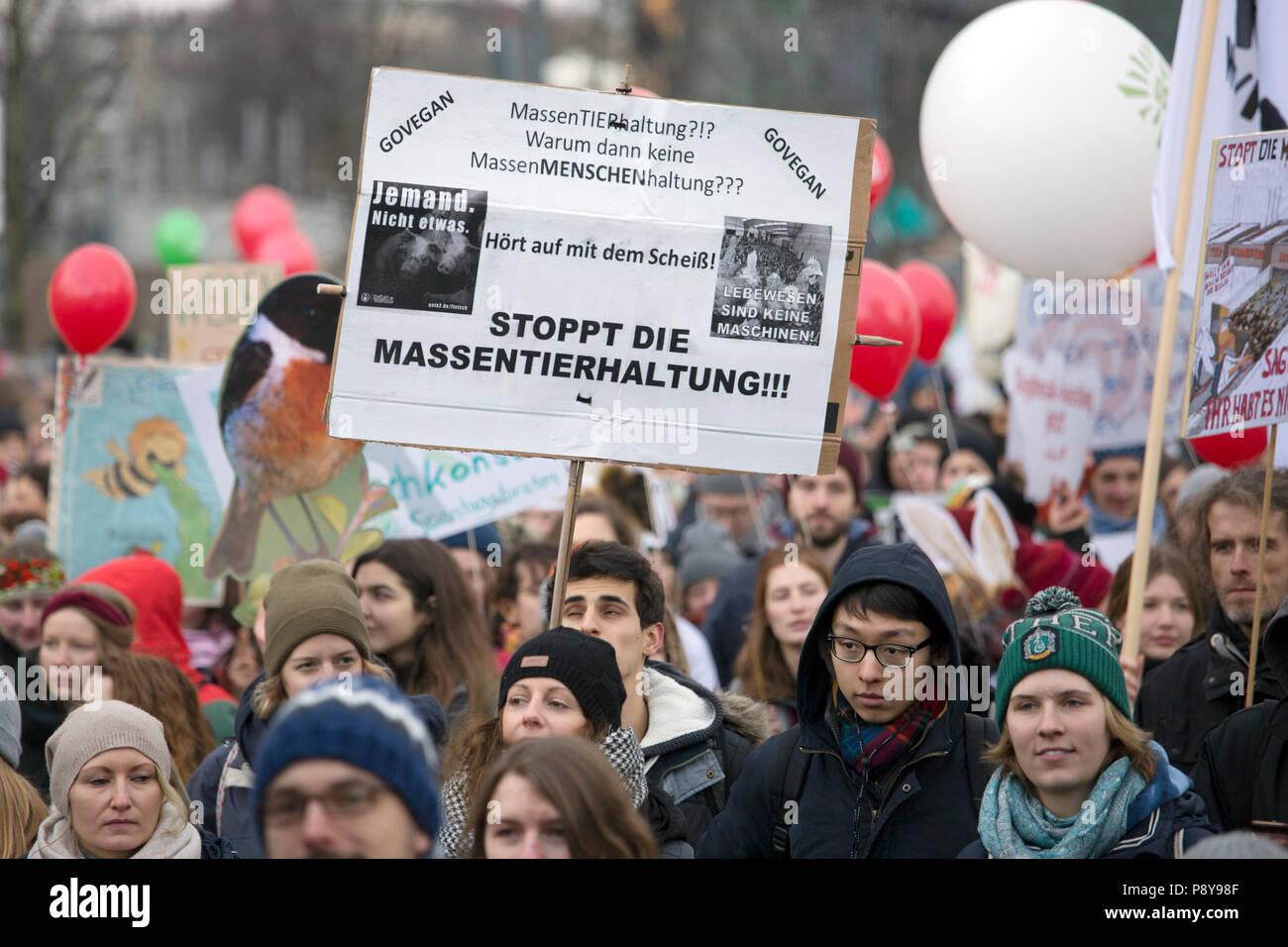 Berlín, Alemania, la gente que protesta en el demo - estamos enfermos! En contra de la agricultura industrial y la mortalidad de las abejas. Imagen De Stock