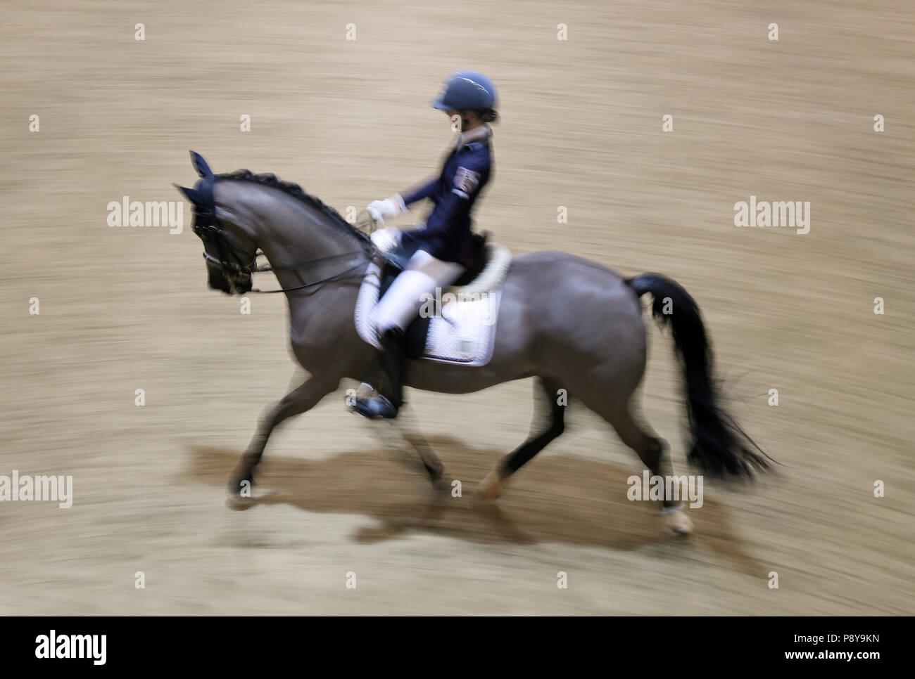 Berlín, Dynamics, doma, caballo y jinete, trote Imagen De Stock