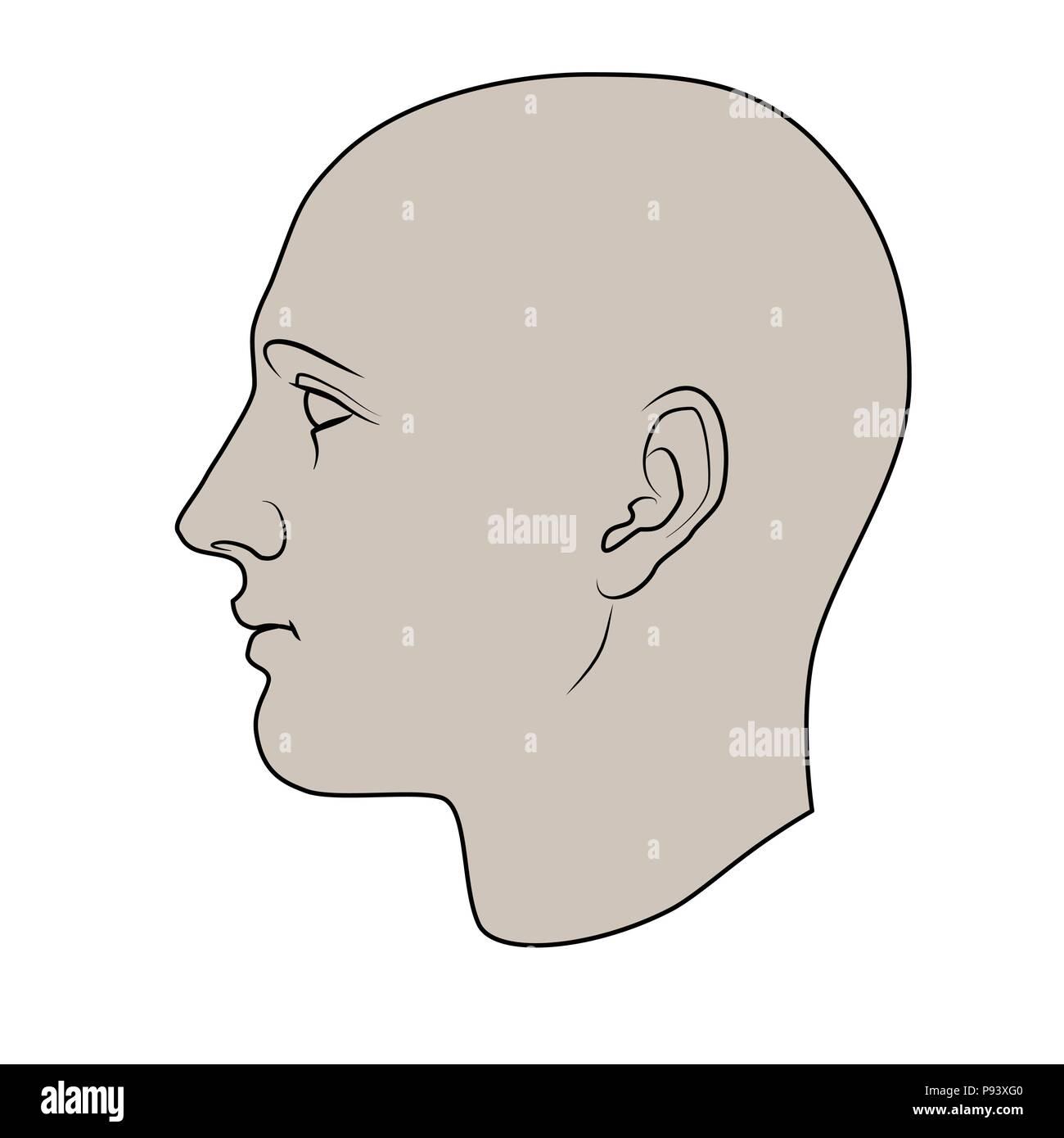 Cabeza humana dibujados a mano en el perfil. Razonabilidad de vector plano aislado sobre fondo blanco. Imagen De Stock