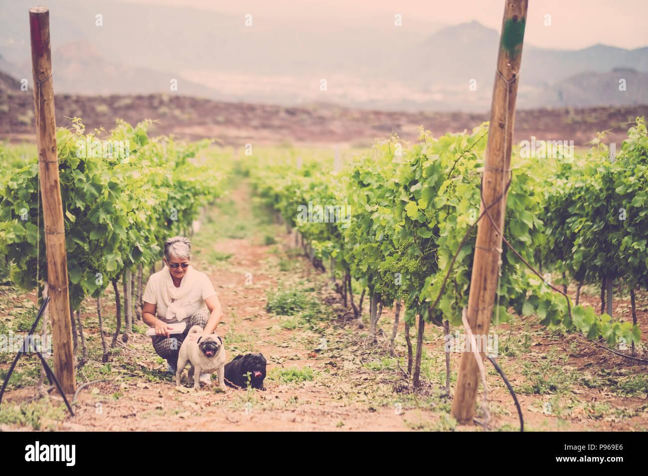 Imagen vintage con caucásicos señora sentada en el viñedo con sus dos mejores amigos perro pug. actividad de ocio al aire libre en grupo por amor a la felicidad. Imagen De Stock