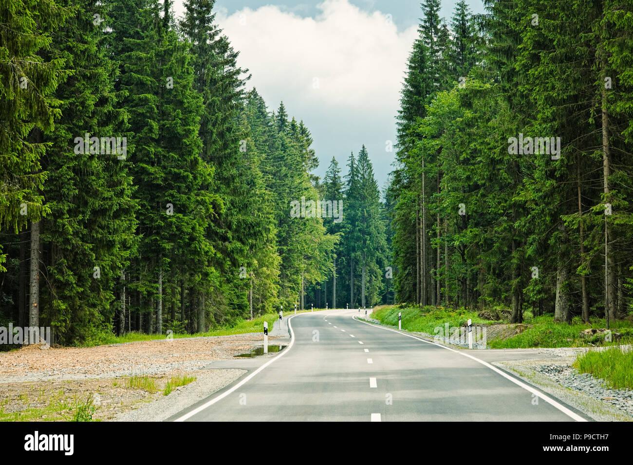 Abra serpenteante carretera arbolada a través de un bosque en Baviera, Alemania, Europa Foto de stock