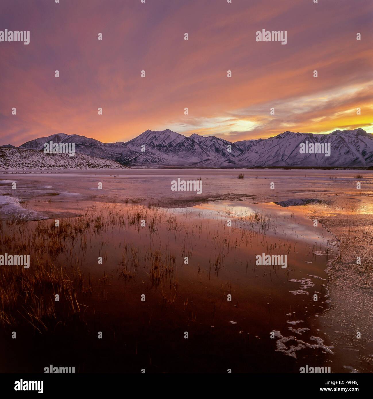 Sunset, Crowley Lake, el Monte Morgan, Montaña Roja, Bosque Nacional Inyo, Sierra Oriental, California Imagen De Stock