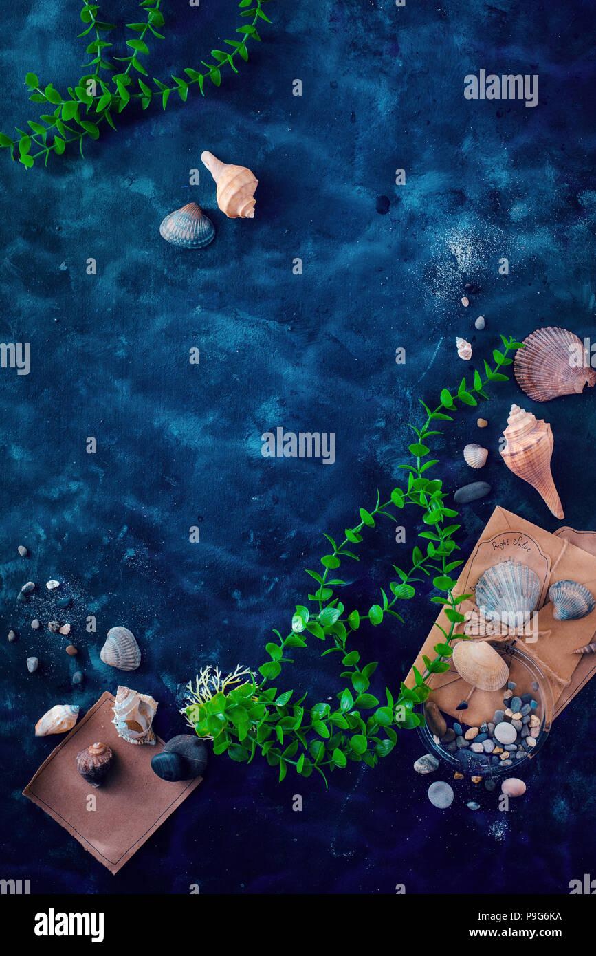 Las conchas marinas y las algas submarinas en un bodegón sobre un fondo oscuro con agua ripple. Los viajes marítimos y biología marina concepto con espacio de copia Imagen De Stock