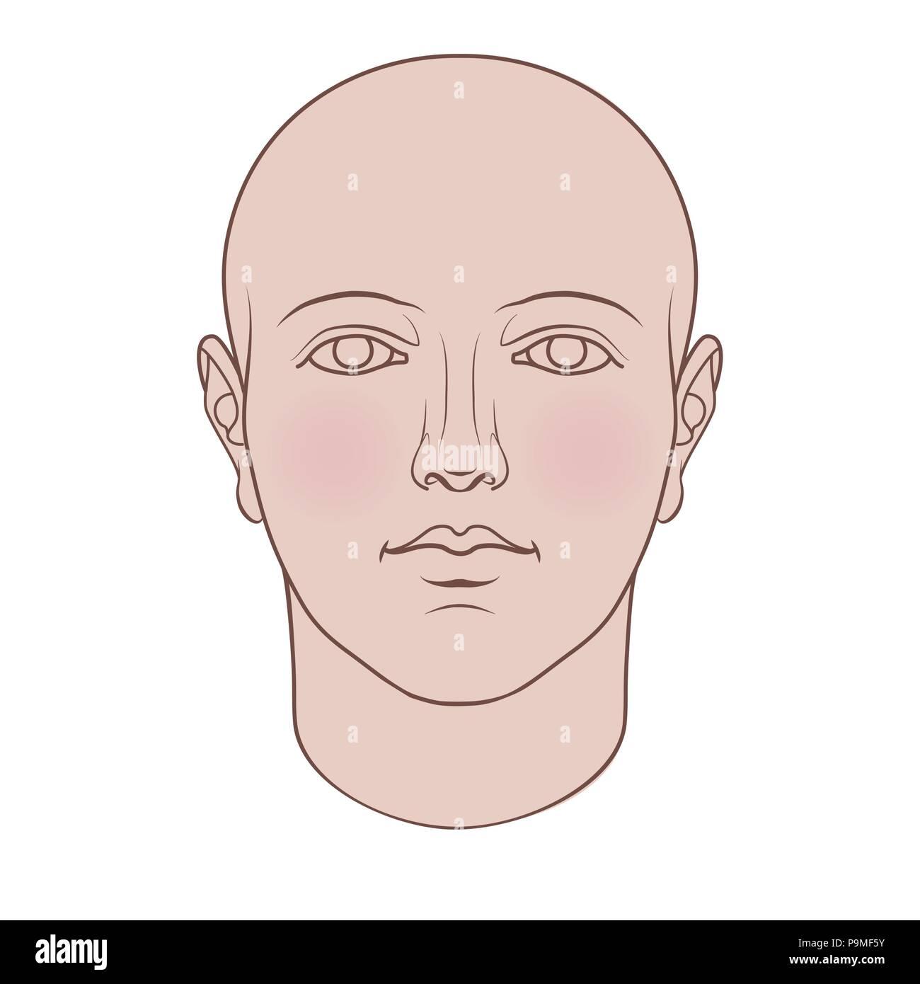 Cabeza humana dibujados a mano en la cara. Vector plano aislado sobre fondo blanco. Imagen De Stock
