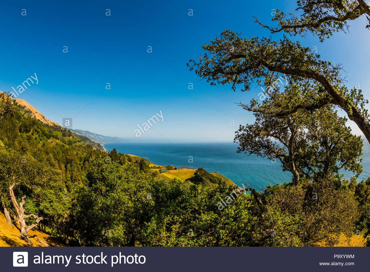 Vista de la costa de Big Sur, el Condado de Monterey, California, USA. Imagen De Stock