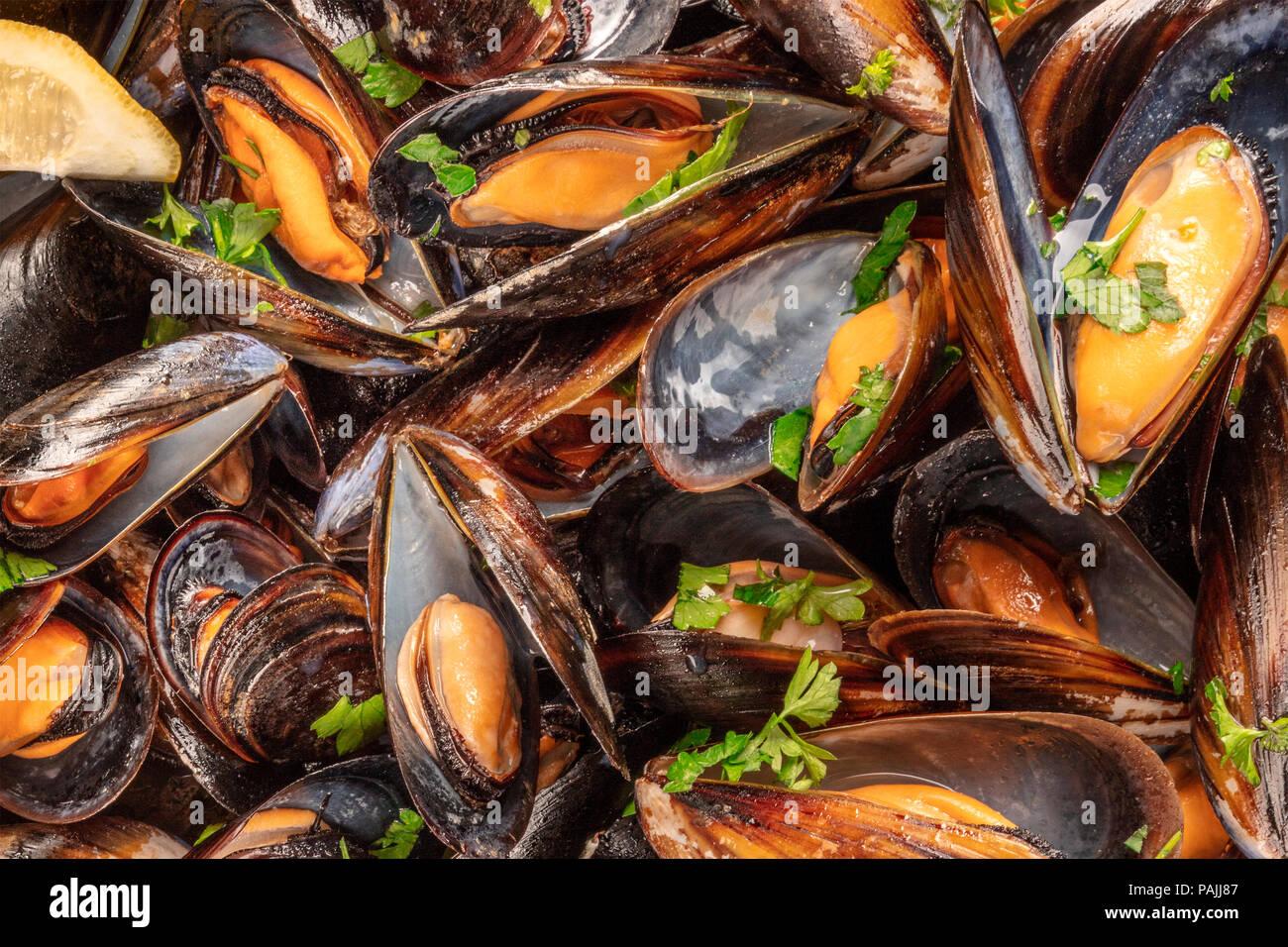 Primer plano de mejillones cocidos, tomada desde arriba Imagen De Stock