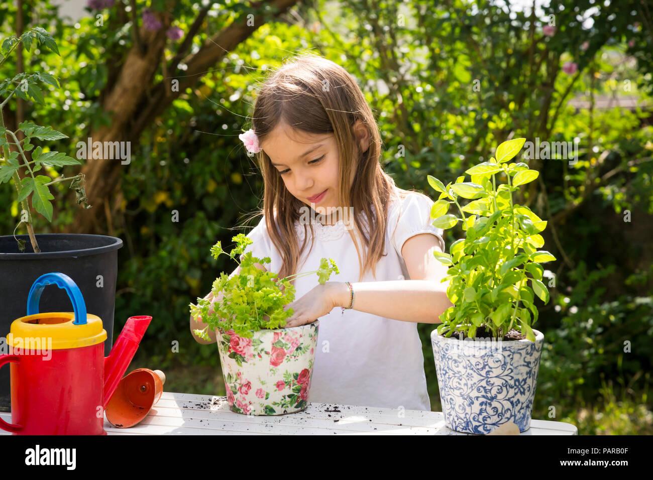 Retrato de niña macetas de perejil sobre la mesa en el jardín Foto de stock