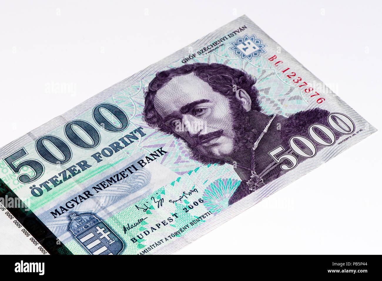 Forint Hungaro Bank Note Forint Hungaro Es La Moneda Nacional De