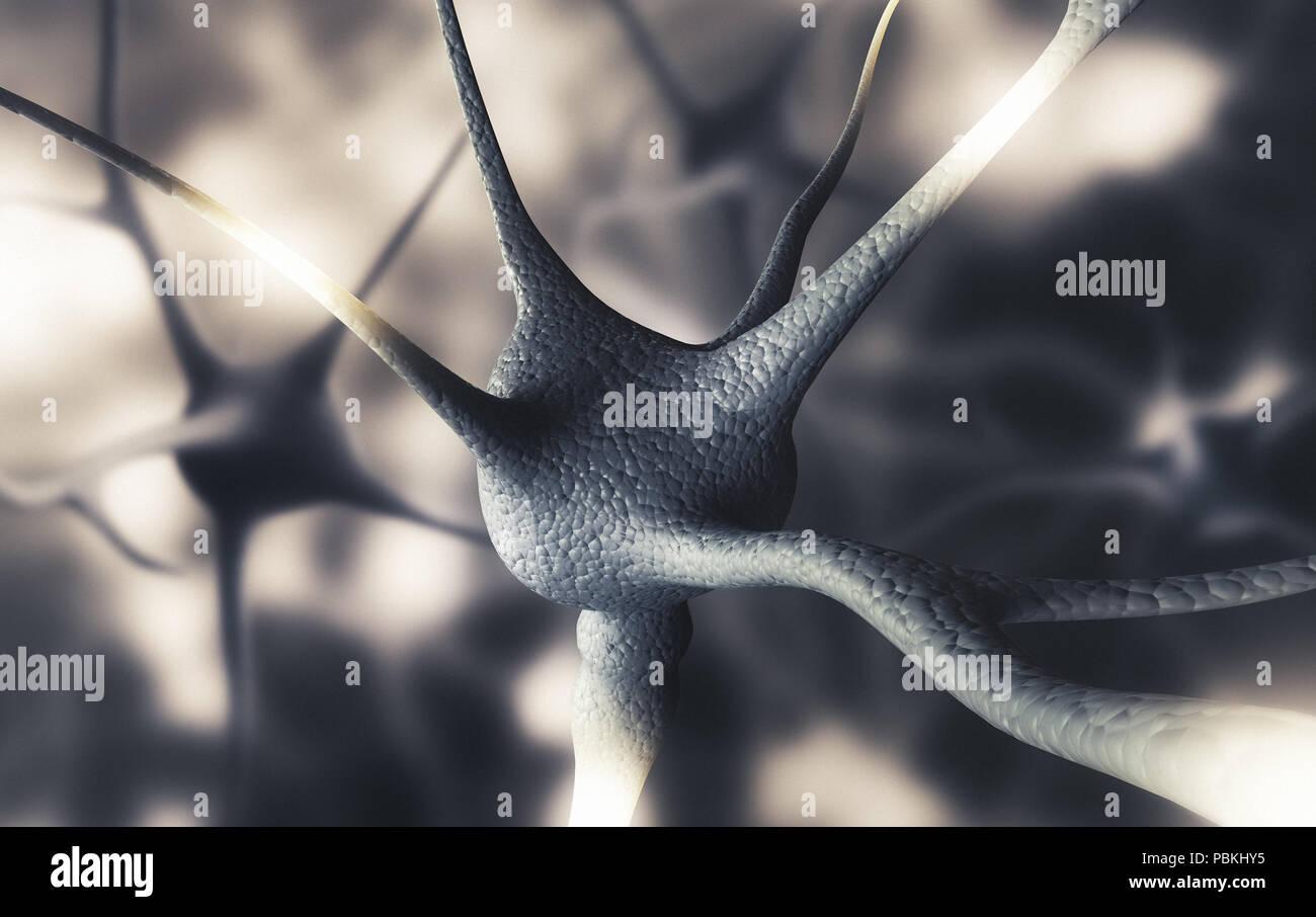 Las neuronas del cerebro humano, 3D Render ilustración Imagen De Stock