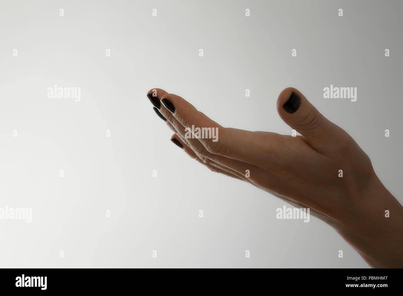 aff28b9b4bde Ver cultivo aislado de la mujer la mano pidiendo dando gesto sobre fondo  blanco con espacio para texto