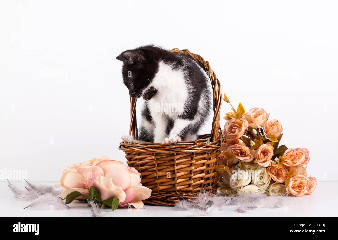 Image result for flores lindas en canastas